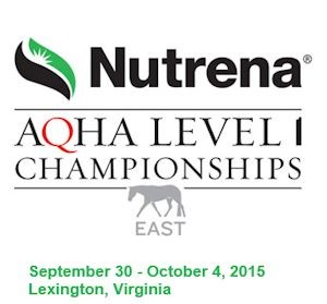 Level1-Championship